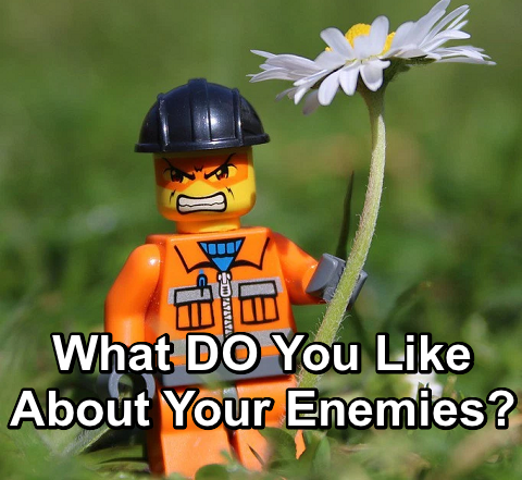 What DO You Like About Your Enemies?